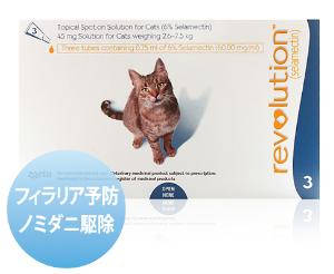 レボリューション 猫
