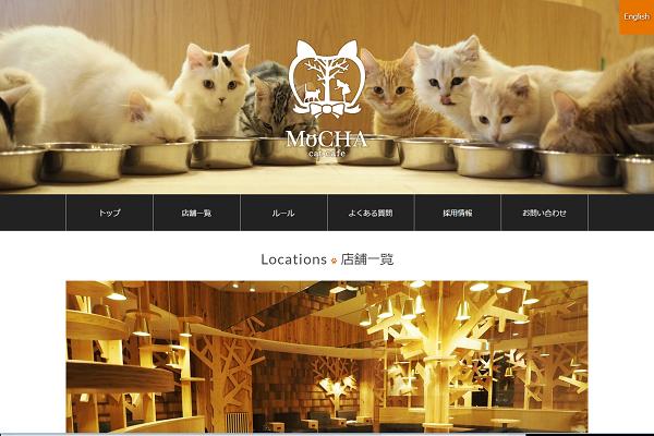 猫カフェ MoCHA